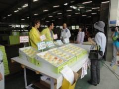 なお(だいなお) 公式ブログ/包近の桃。in岸和田市包近町 画像1