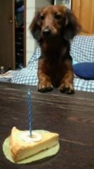 竹尾宗将 プライベート画像 1才の誕生日のときです!