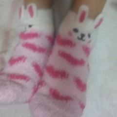 大山真実 公式ブログ/ウサギ靴下 画像1