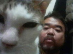 グレート義太夫 公式ブログ/猫・猫・猫! 画像3