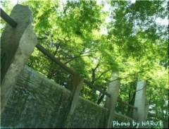 紺野なる プライベート画像 緑