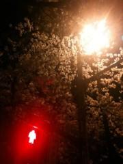 cossami 公式ブログ/明日はストリートライヴ♪ 画像1