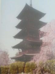cossami 公式ブログ/花開く 画像1