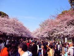 エイジア エンジニア 公式ブログ/☆春〜♪☆ by YOPPY 画像3