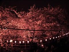 エイジア エンジニア 公式ブログ/☆近日公開☆ by YOPPY 画像2