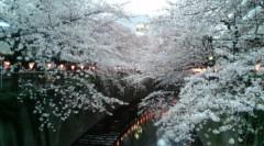 エイジア エンジニア 公式ブログ/あちゃちゃ byけーぢぃ 画像1