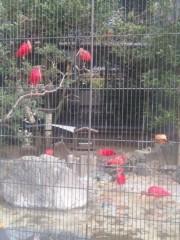 神咲みゆ 公式ブログ/ZOOってきた 画像2