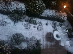 池内ひろ美 公式ブログ/東京は雪が降っています 画像1