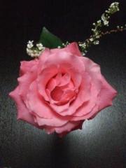 池内ひろ美 公式ブログ/薔薇の花束が原因で夫婦ゲンカになった 画像1