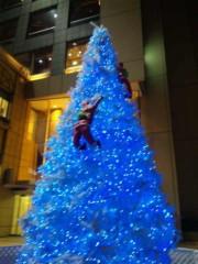 齊藤美絵 公式ブログ/ サンタさんよじ登り中のツリー@桜木町  画像1
