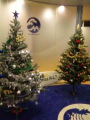 齊藤美絵 公式ブログ/ クリスマスツリー@FMヨコハマ  画像1