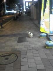 植田ゆう希 公式ブログ/濱猫 画像3