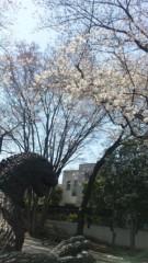 植田ゆう希 公式ブログ/美女と野獣 画像2