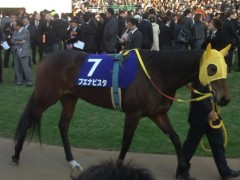 小堺翔太 公式ブログ/有馬記念・ブエナビスタ 画像2