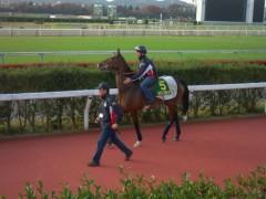 小堺翔太 公式ブログ/朝イチで馬を見る 画像2
