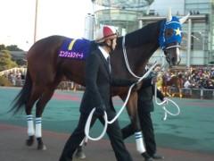 小堺翔太 公式ブログ/【東京2歳優駿牝馬】今年を締めた「韋駄天使」 画像1