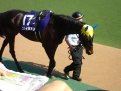 小堺翔太 公式ブログ/孝行馬 画像2