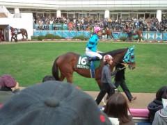 小堺翔太 公式ブログ/日曜日の競馬を見て… 画像1