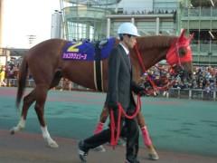 小堺翔太 公式ブログ/【東京2歳優駿牝馬】今年を締めた「韋駄天使」 画像3