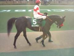 小堺翔太 公式ブログ/根岸ステークスの馬たち 画像1