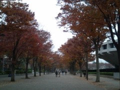小堺翔太 公式ブログ/○○の季節 画像1