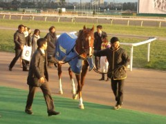 小堺翔太 公式ブログ/弟の勝ちに兄を偲ぶ 画像3