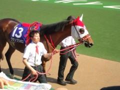 小堺翔太 公式ブログ/孝行馬 画像1