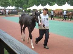 小堺翔太 公式ブログ/セレクトセール2日目(7月9日)その2 画像2