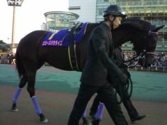小堺翔太 公式ブログ/【東京2歳優駿牝馬】今年を締めた「韋駄天使」 画像2