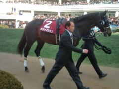 小堺翔太 公式ブログ/AJC杯の馬たち 画像3