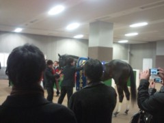 小堺翔太 公式ブログ/馬の復活に、人の想いも 画像2