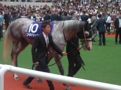 小堺翔太 公式ブログ/ゴールドシップの「オン」と「オフ」 画像1