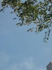 小堺翔太 公式ブログ/今日は、今日こそは! 画像1