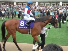 小堺翔太 公式ブログ/1分数秒に見た「競馬」 画像2