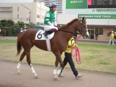 小堺翔太 公式ブログ/馬熱再燃 画像3