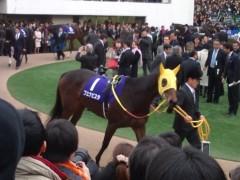 小堺翔太 公式ブログ/【有馬記念3】最後の「ブエナビスタ」 画像1