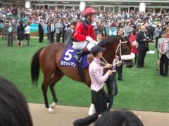 小堺翔太 公式ブログ/1分数秒に見た「競馬」 画像1