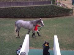 小堺翔太 公式ブログ/有馬記念の日 画像3