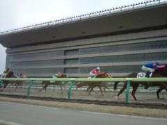 小堺翔太 公式ブログ/再開の日・4『馬が近い!』 画像2