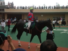 小堺翔太 公式ブログ/中京競馬観戦記・2 近い! 画像3