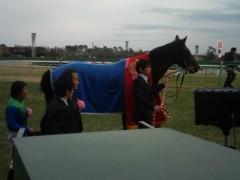 小堺翔太 公式ブログ/AJC杯の馬たち 画像2