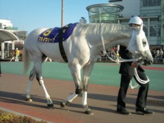 小堺翔太 公式ブログ/フジノウェーブ、4連覇。に、ちなんで… 画像2