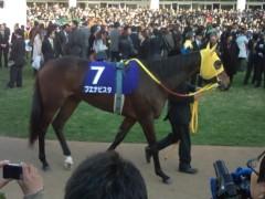 小堺翔太 公式ブログ/有馬記念・ブエナビスタ 画像1