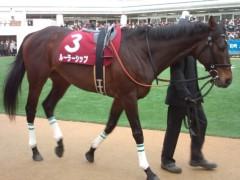 小堺翔太 公式ブログ/【AJCC】ルーラーシップ、G1統治へ! 画像1
