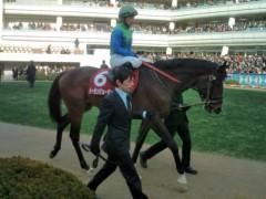 小堺翔太 公式ブログ/AJC杯の馬たち 画像1