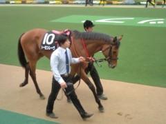 小堺翔太 公式ブログ/頑張る馬(あなた)へ 画像1