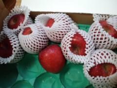武田真由美 公式ブログ/リンゴ 画像1