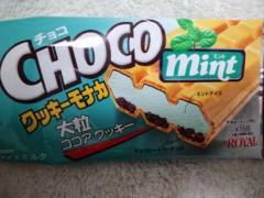 武田真由美 公式ブログ/チョコミント最中アイス 画像1