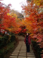 大橋由起子 公式ブログ/もみじ*紅葉 画像1