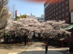 石神 瑤生子 公式ブログ/花園神社 画像1
